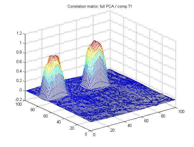 vxCalcActivMap : Correlation map between full PCA-reconstruction and task-related source (T1).